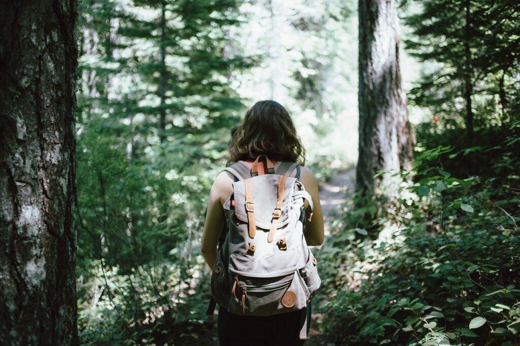 hiker, backpacker, hiking